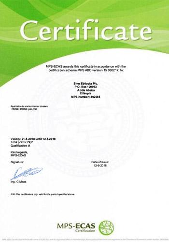 Certificates, Certificates