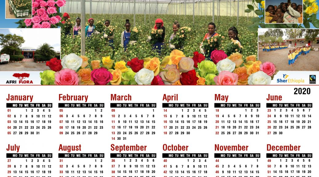 kalender Afriflora