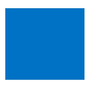 IDH logo