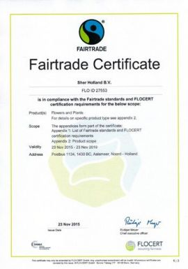 FAIRTRADE HOLLAND